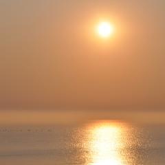 туманное море