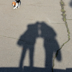 Фрагмент с тенью