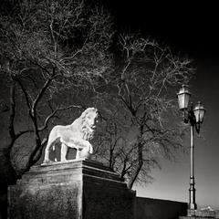 Одесский лев