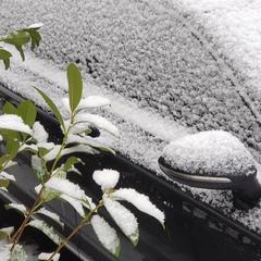 Зимний фрагмент