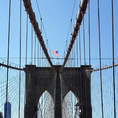 Паутина Бруклинского моста