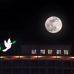 большая луна над городом
