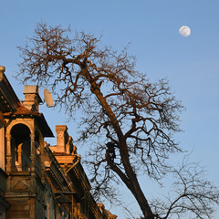 Фрагмент с луной