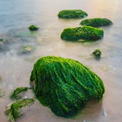 Морской минимализм