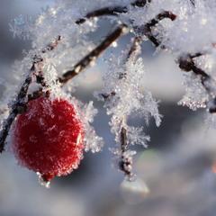 Прощай зима ...
