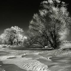 Мелодия зимы