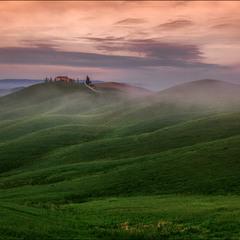 Tuscany grassland.