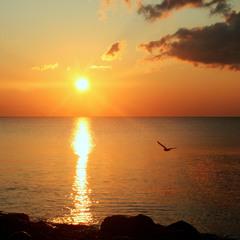 Безмолвное море,лазурное море,Стою очарован над бездной твоей.