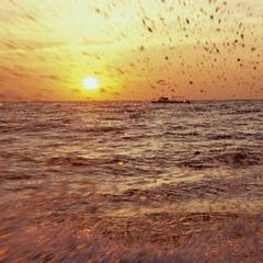 Кто видеп море-тот сюда вернётся