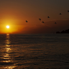 Южное Солнце