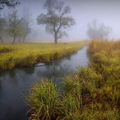 В долине туманной реки