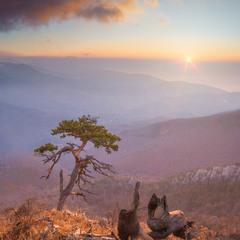 Осеннее утро.  Над каждым холмом безымянным  Прозрачная дымка