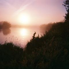 утро над Стырем
