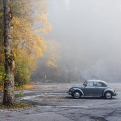Германия. Fussen. Осеннее утро в парке.