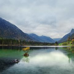 Германия. Ramsau. Озеро Hintersee, перед дождем или паслись четыре коровы.
