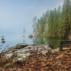 Германия. Рамзау. Утренняя прогулка вдоль озера Hintersee.