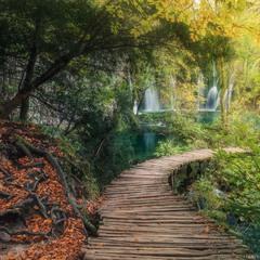 Хорватия. Осень в парке Плитвицкие озера