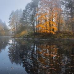 Германия. Фюссен. Озеро Миттер осенью