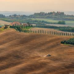 Италия. Тоскана. Поля у виллы Agriturismo Baccoleno