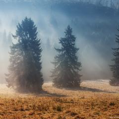 Словакия. Осеннее утро у Западных Татр