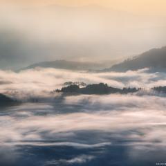 Украина. Карпаты. Ушастый камень. Туманные реки