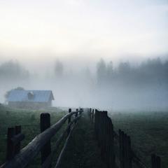 Туманний ранок у Ворохті...