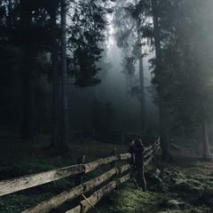 Фотополювання в тумані...