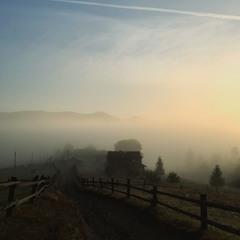Тиша і туман...