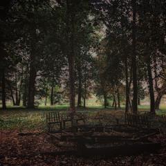 осінь в парку...