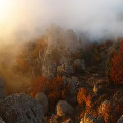 Осенним утром.