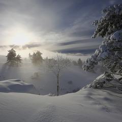 Зимняя...