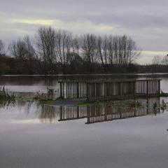 Наводнение и вечер.....
