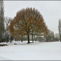 Между осенью и зимой...