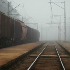 Во власти тумана...