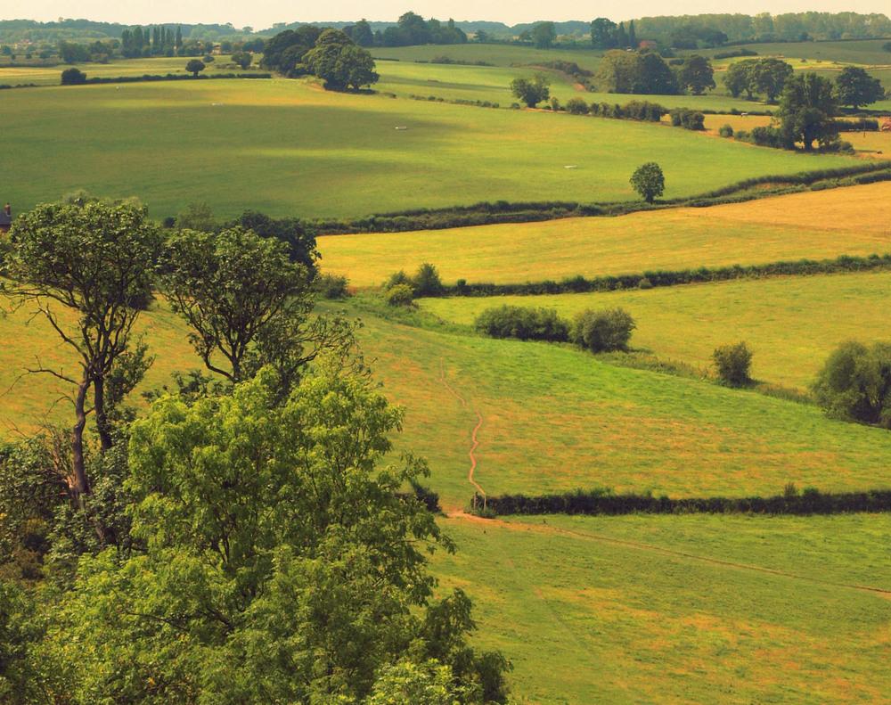 красивый равнина картинки фото искусство
