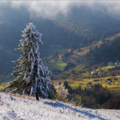Осень встречает зиму