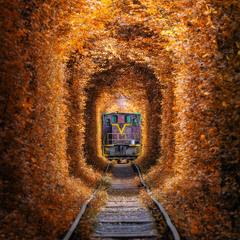 Туннель Любви и поезд