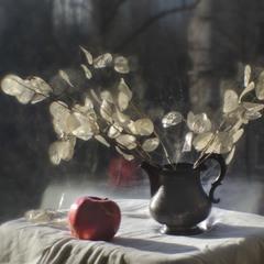 декабрьский этюд