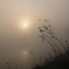 Утро туманное...