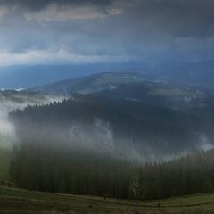 Вечерний туман