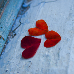 leaves the heart