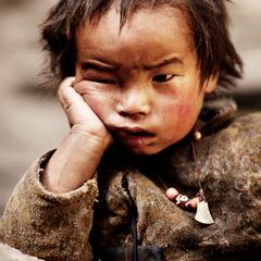 Суровый тибетец