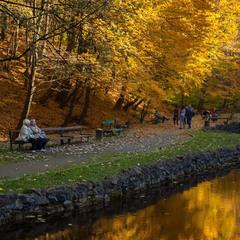 Осень жизни как и осень года...