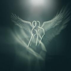 На двох  одні крила...