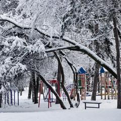 """""""В летнем парке зима..."""""""