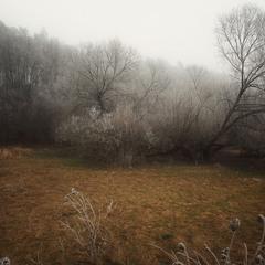норовлива зима