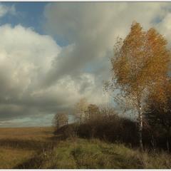гуляя осенью-3