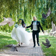 Wedding Day. Dima & Dasha