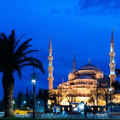 Стамбул. Мечеть Султанахмед.
