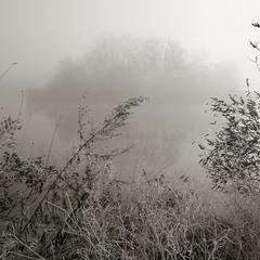 Морозное утро 2